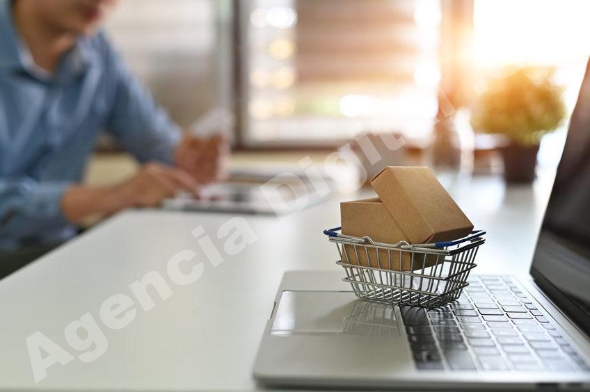 Desarrollo Web no usar shopify Agencia Digital de Costa Rica