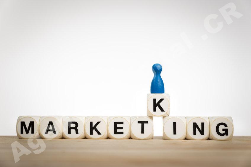 Desarrollo Empresarial branding o ventas Agencia Digital de Costa Rica